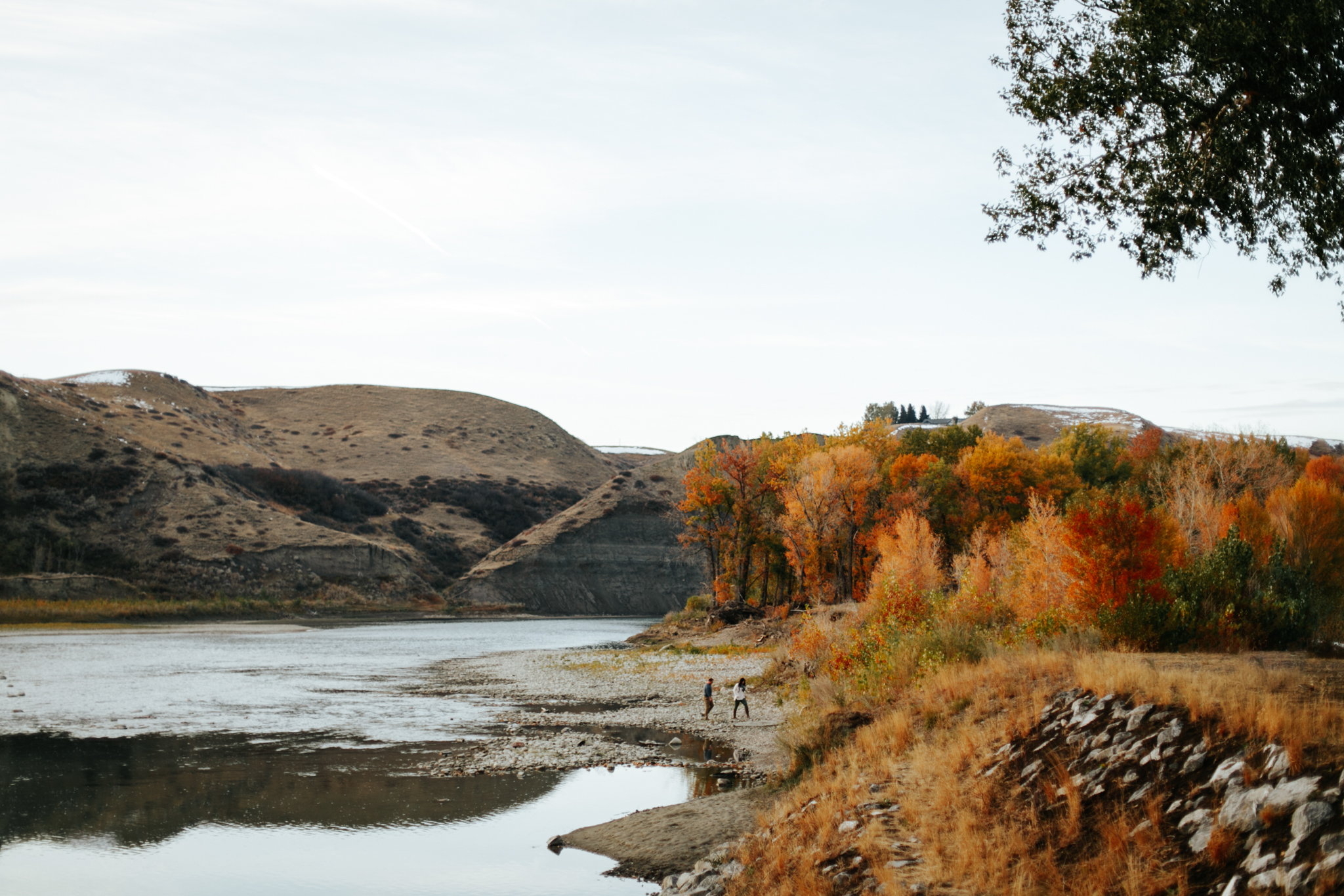 lethbridge-photographer-love-and-be-loved-photography-christy-bryan-fall-autumn-engagement-photo-image-picture-46.jpg