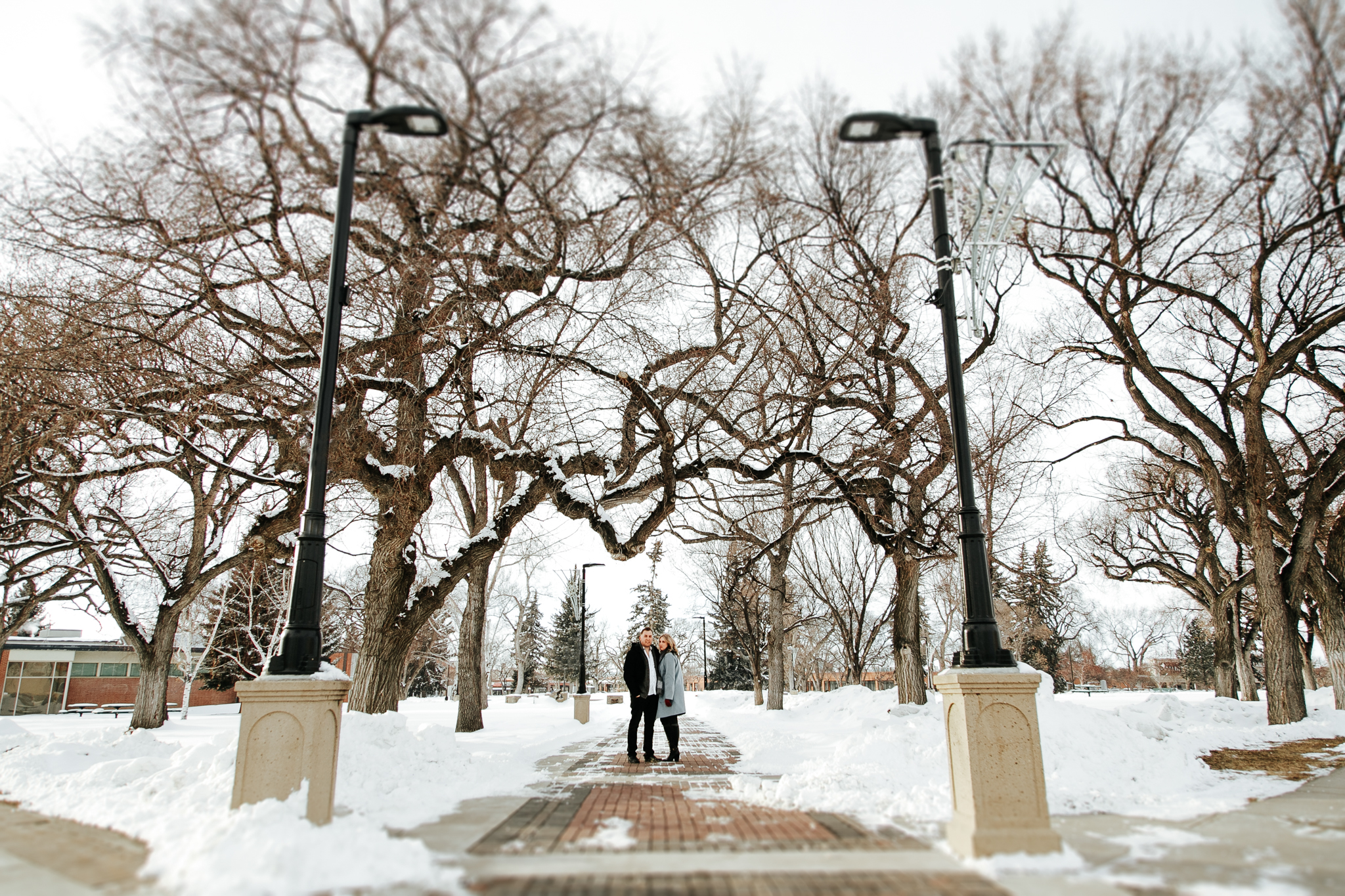 lethbridge-photographer-love-and-be-loved-photography-brandon-danielle-winter-engagement-downtown-yql-picture-image-photo-48.jpg