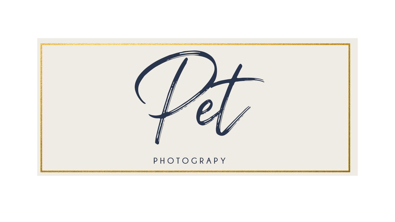 Pet Photography - Our four legged, furry little babies are valuable members of the family, too! Capture their sweetness in a portrait, or bring them in to your next family photo session.