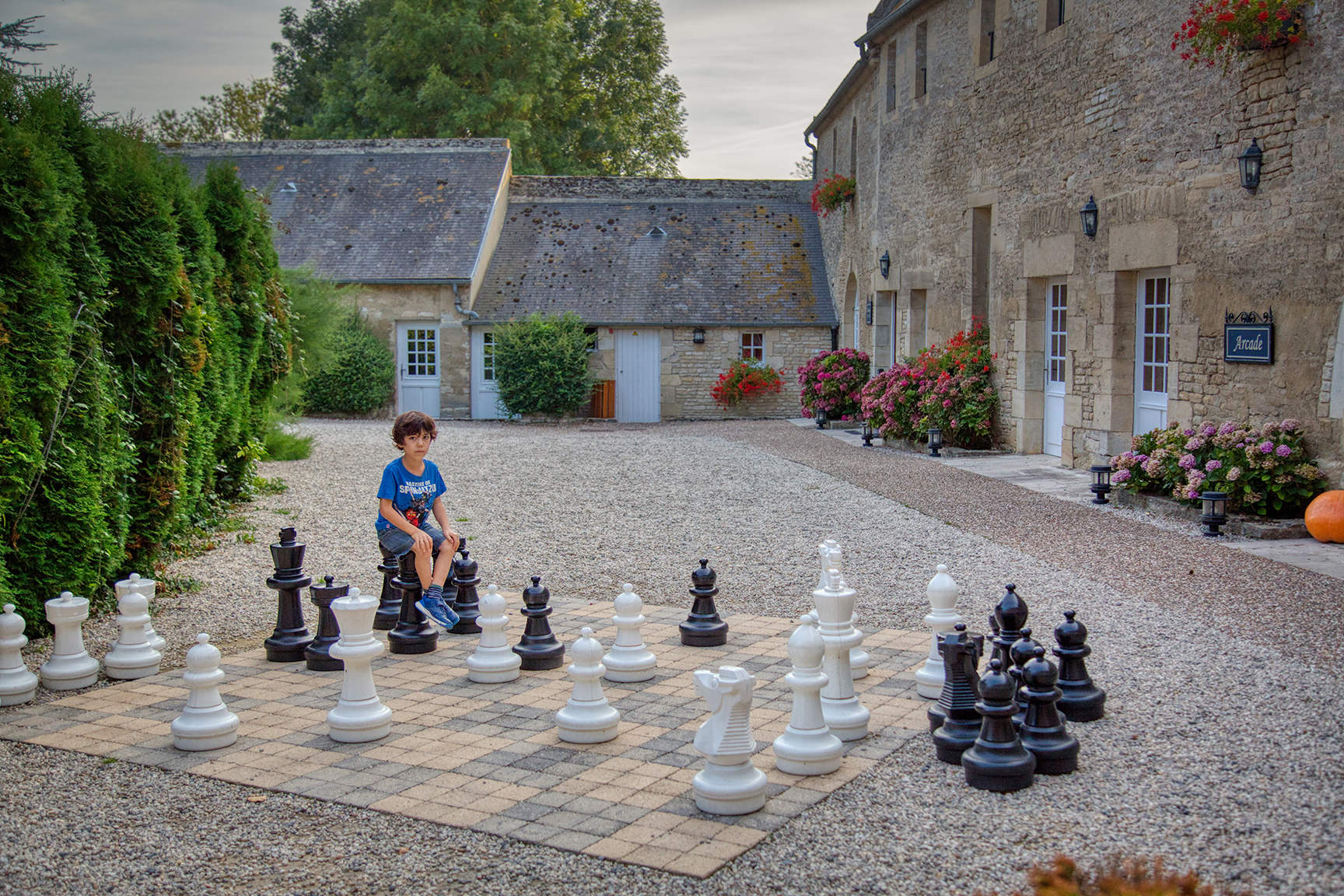 Big chess pieces