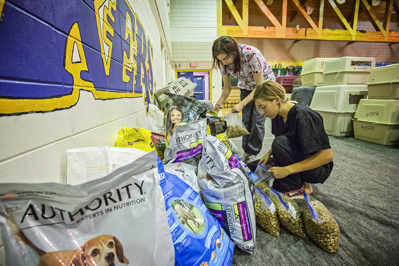Team members prep the dog food bags