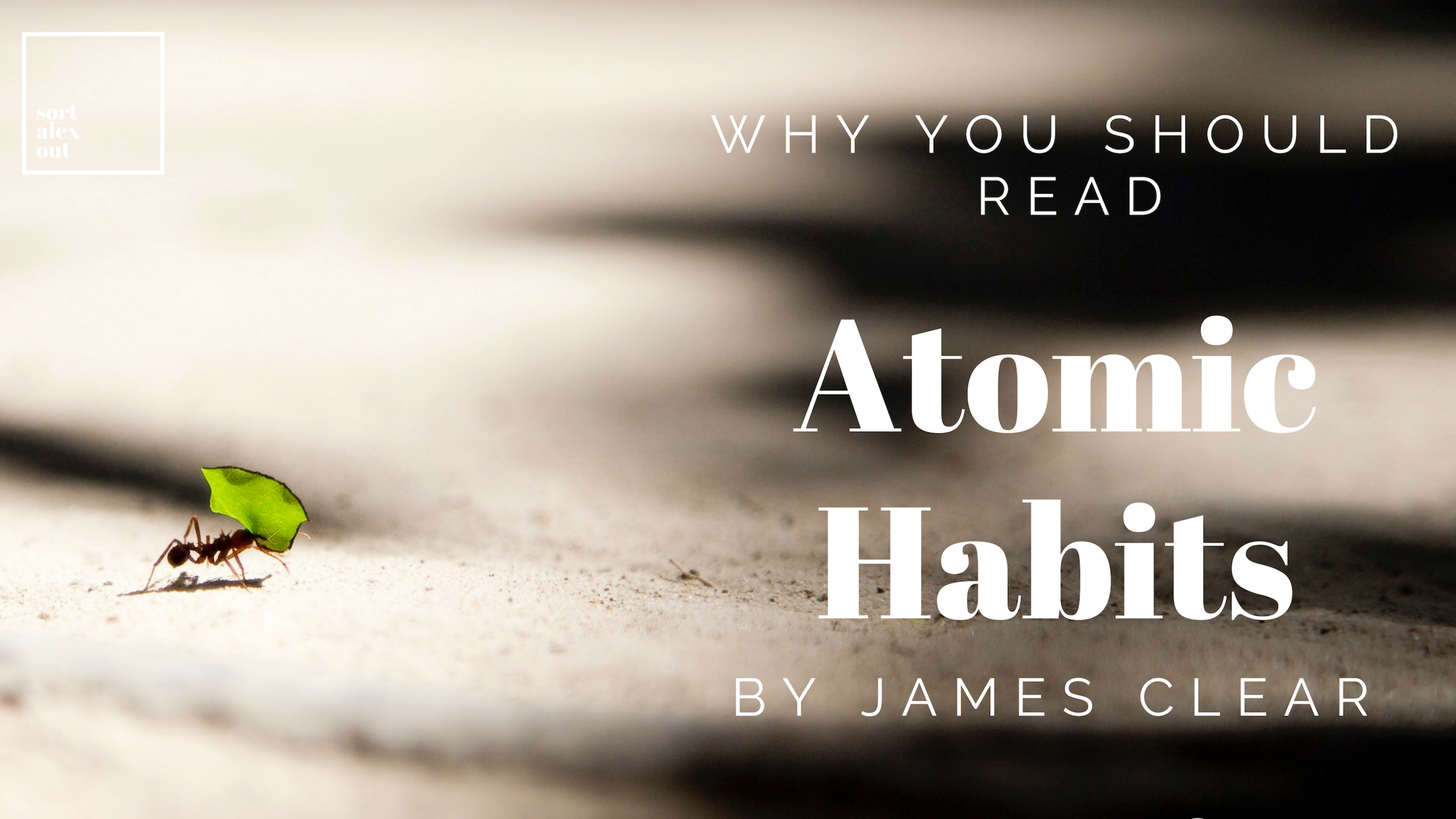 Why you should read Atomic habits.png