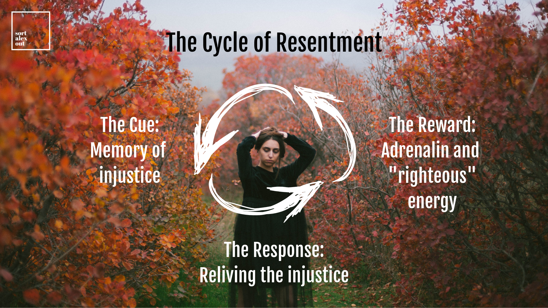 cycle of resentment