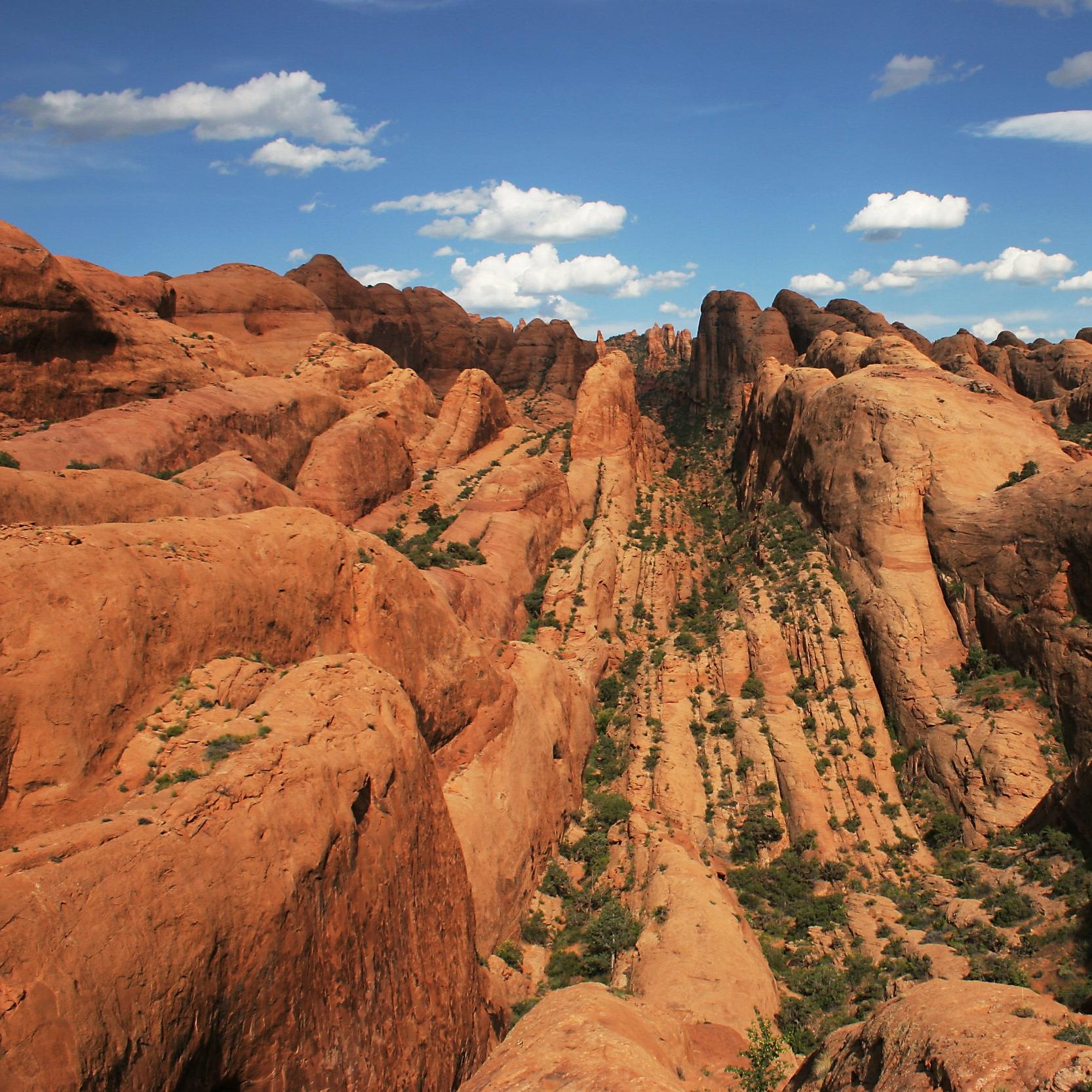 IMG_9061 - behind the rocks.jpg