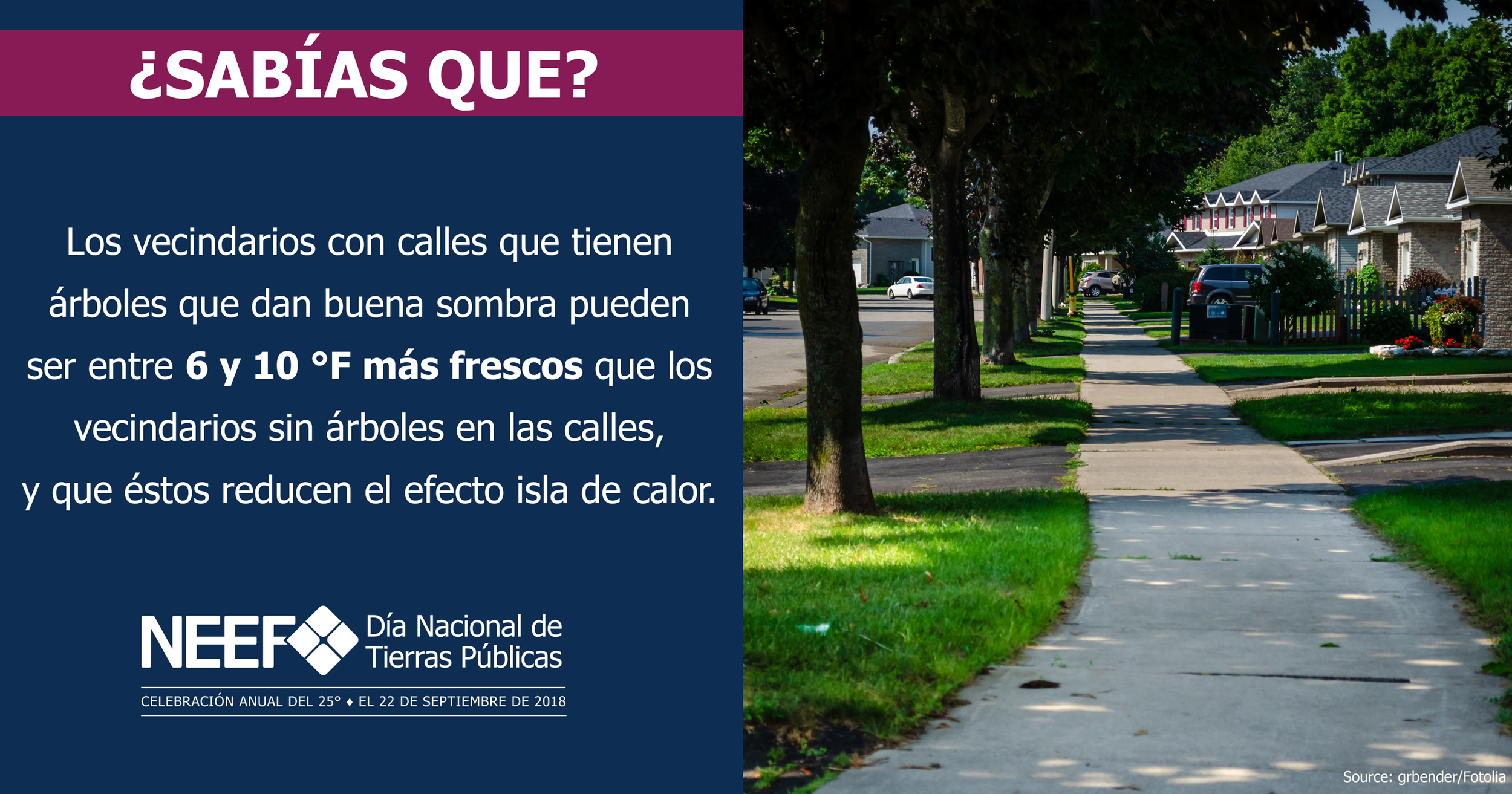 SOCMED18-NPLD-FunFacts-ShadyTrees-Spanish-2540x1334.png