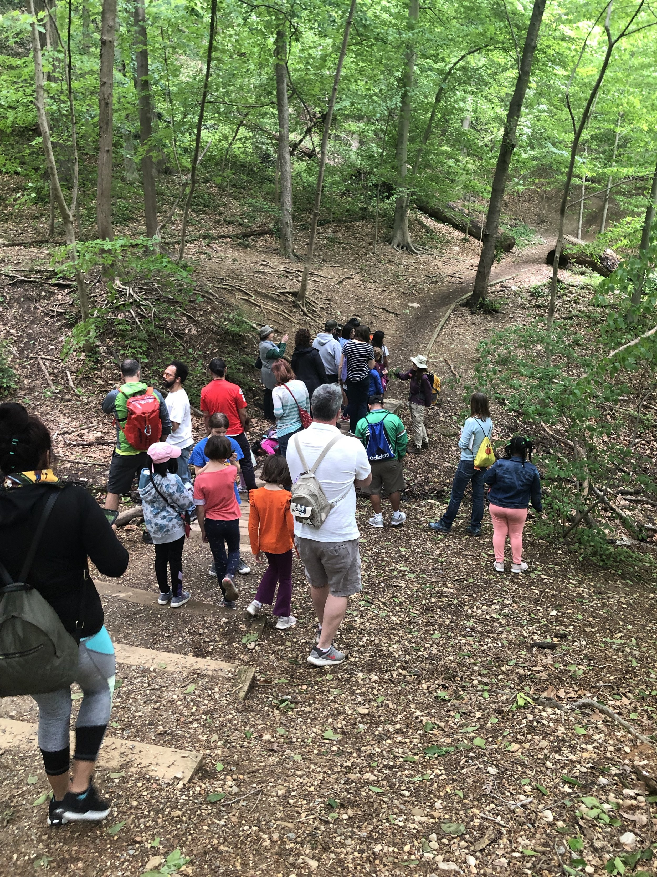 One of the groups heads down the trail in search of plants, animals, and insects to document in iNaturalist.