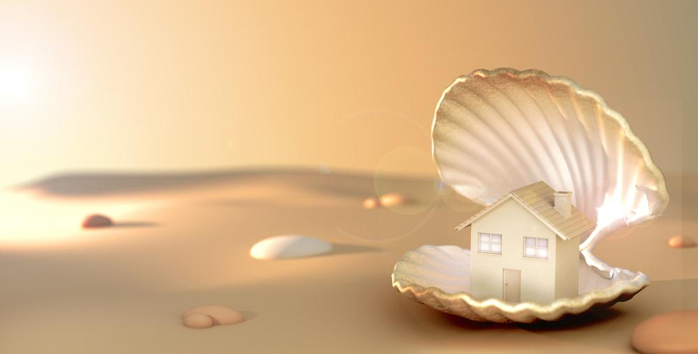 House in Shell.jpg