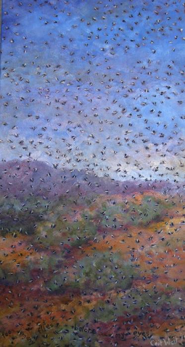 too-many-flies.jpg