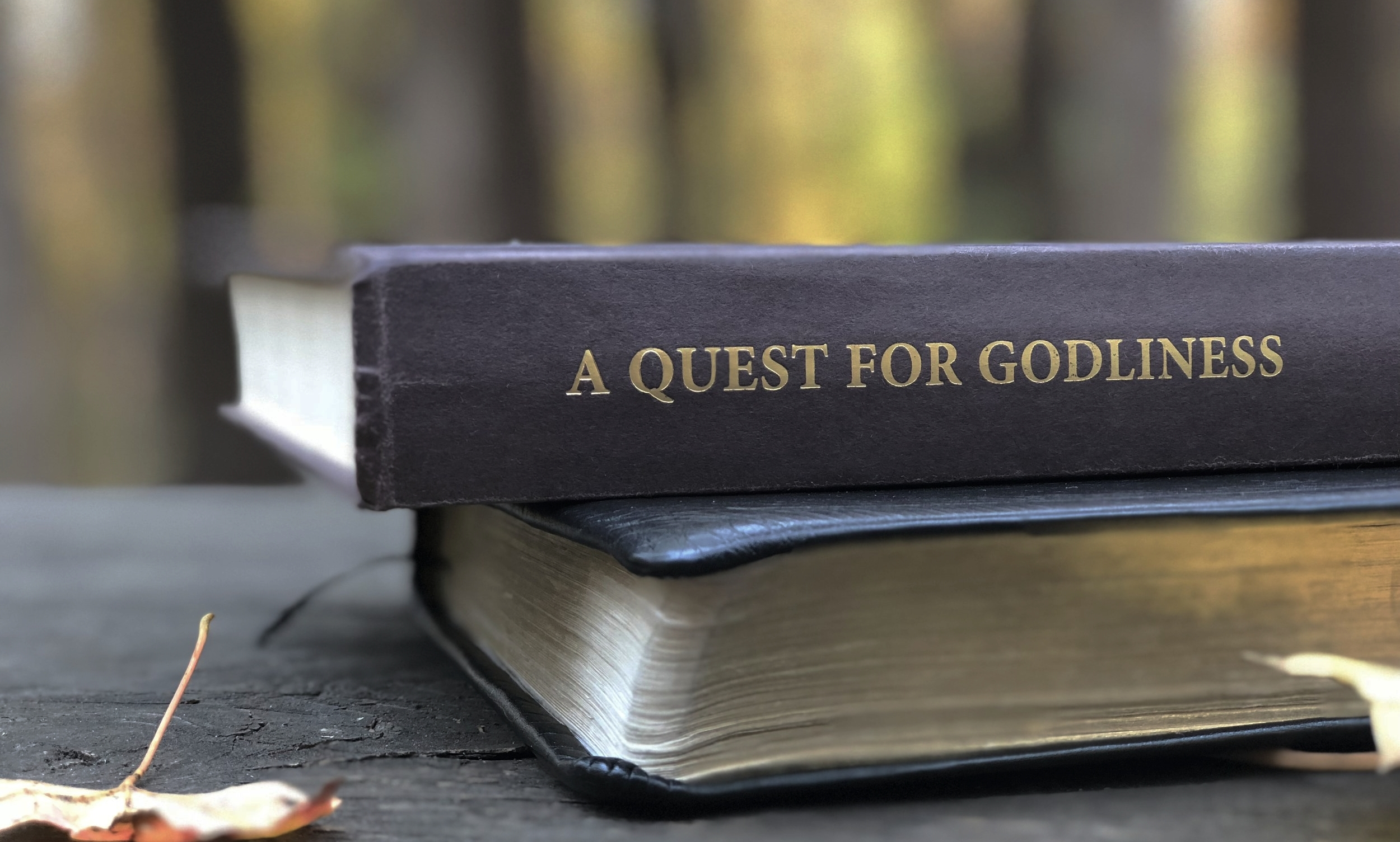 Quest For Godliness exists in order to help others grow in their maturity in Christ.   - We review solid Christian books and write articles on the Christian life. Our prayer is that you grow in your faith.