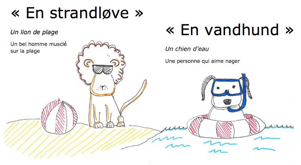 Strandlve_og_vandhund.png