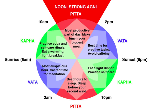 阿育吠陀以三大Dosha為基礎,每四小時按順序交替Kapha (水), Pitta (火) 和 Vata (風),每天重覆2次,  共6個時份  。 (圖片來源  :Ayurveda (Idiot's Guides) by Sahara Rose Ketabi   )