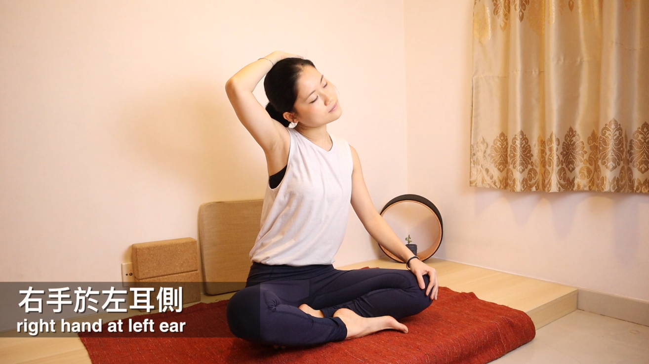 動作 (2) - 伸展頸側