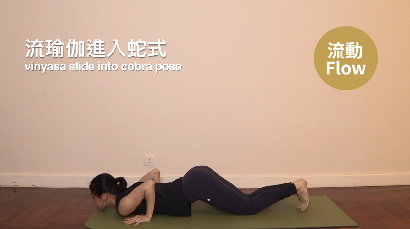 09.yoga for hips eight limbs pose.png