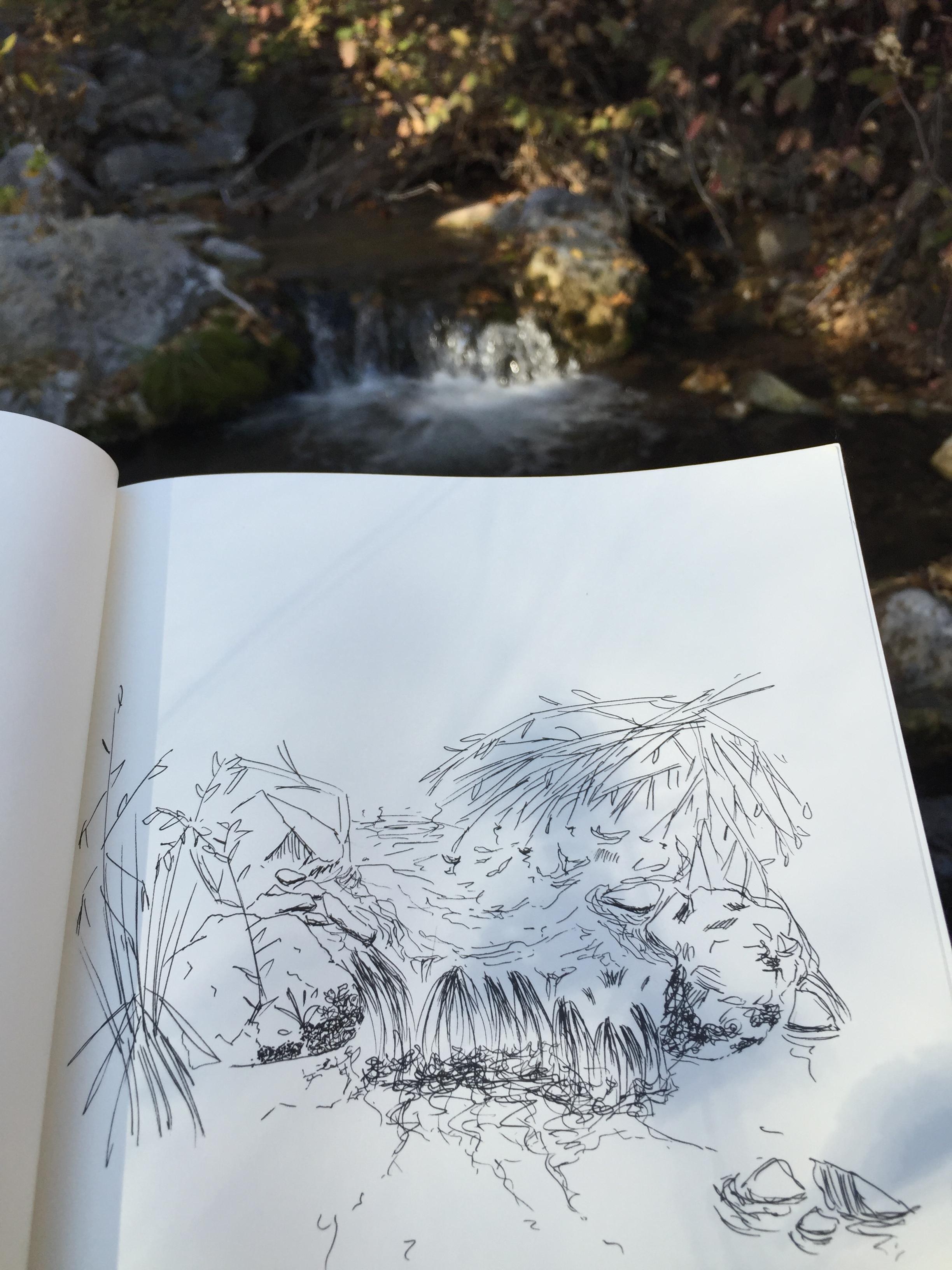 Provo, Utah , Black Pens