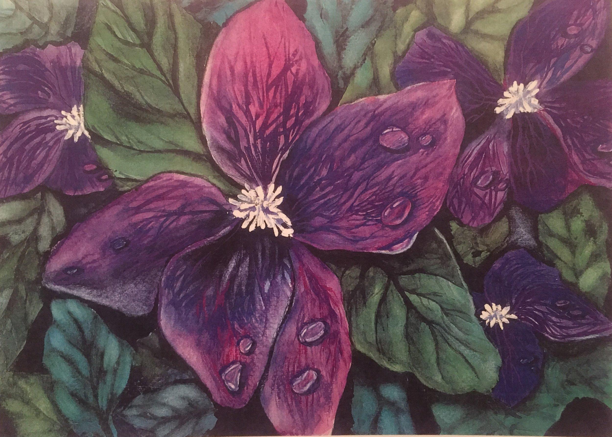 Violets,  Watercolor