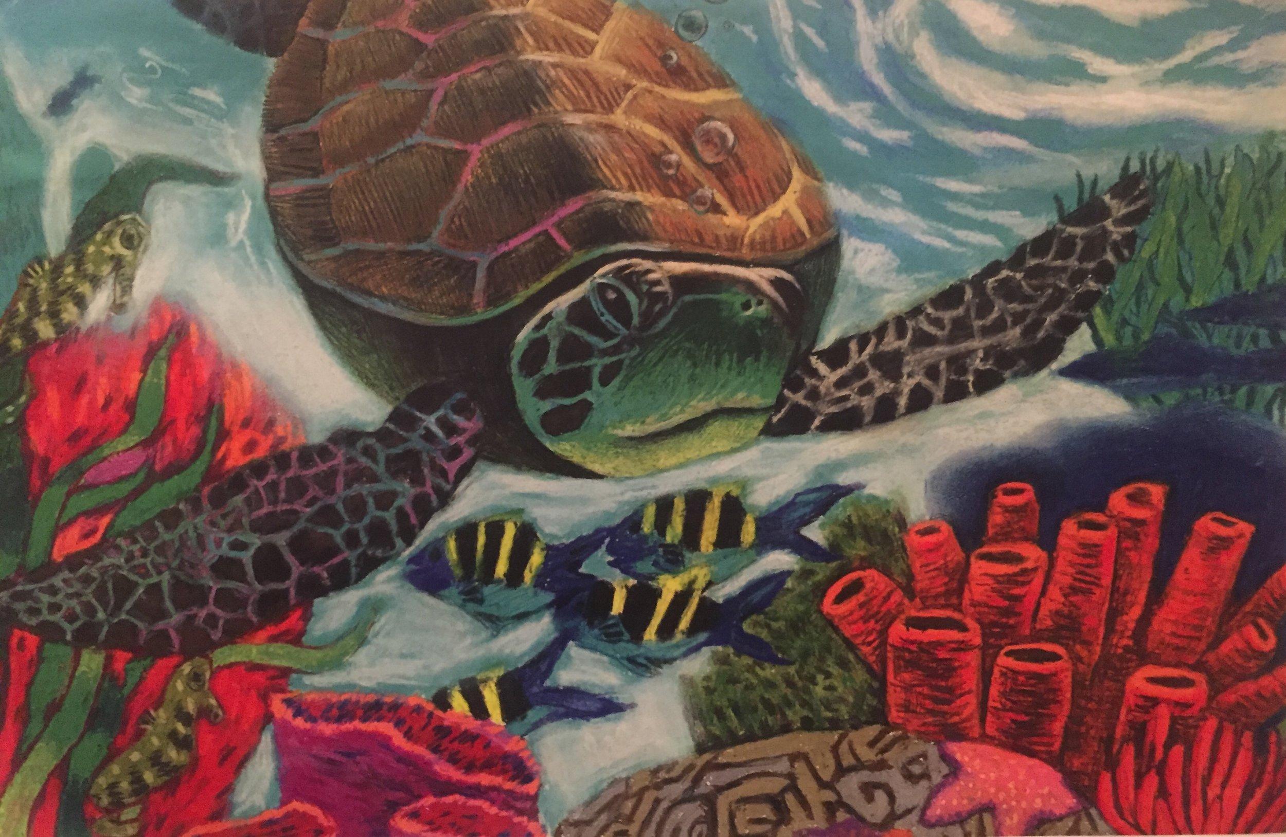 Underwater Turtle, Oil Pastels