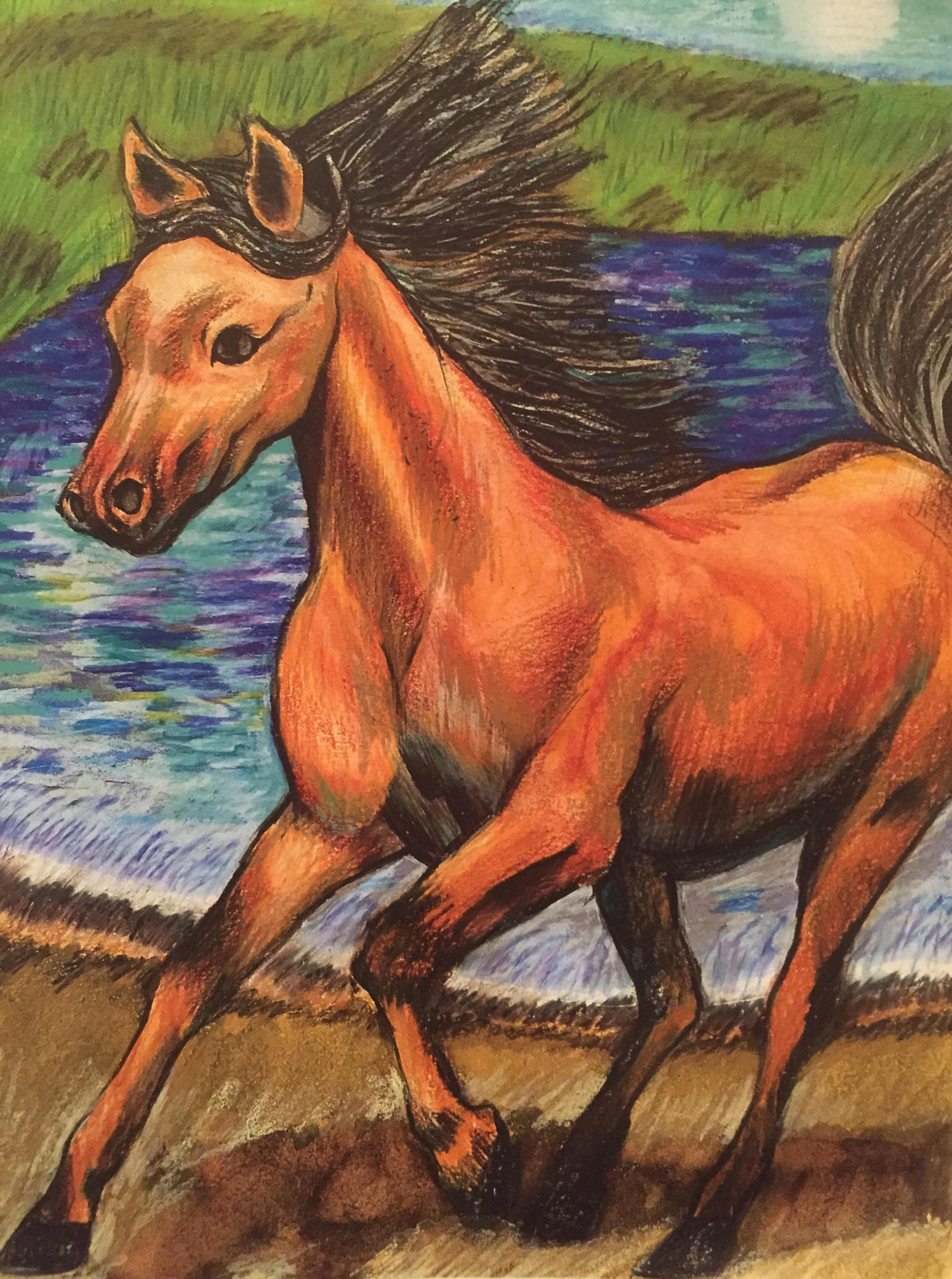 Horse on Beach,  Colored Pencils on Watercolor