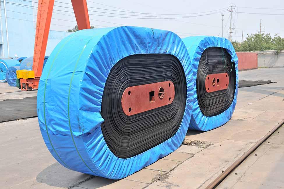 Belt Package-R.jpg