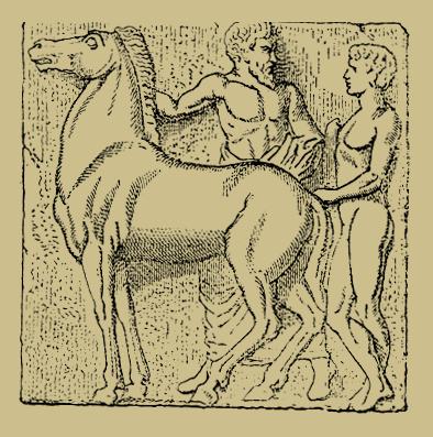 Pferd_Mann_Frau_Q.png