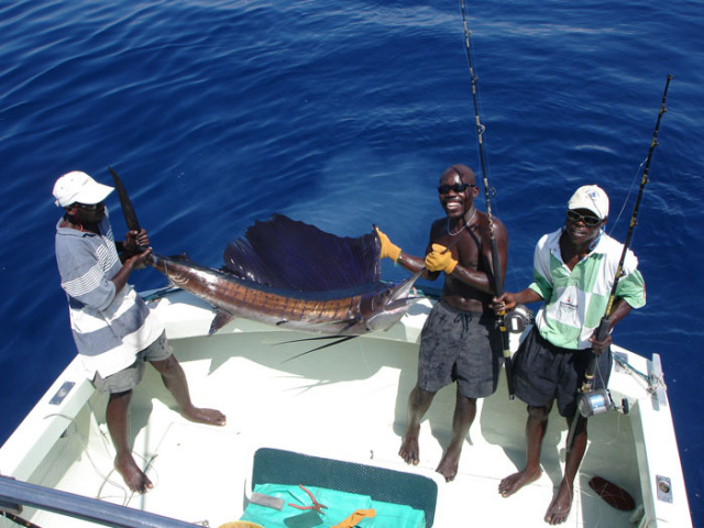 DEEP SEA FISHING & CREEK FISHING - Watamu is one of the world's top destinations for Deep Sea Fishing, with the majority of skippers supporting the 'Tag and Release' system, to allow the sport to continue well into the future.