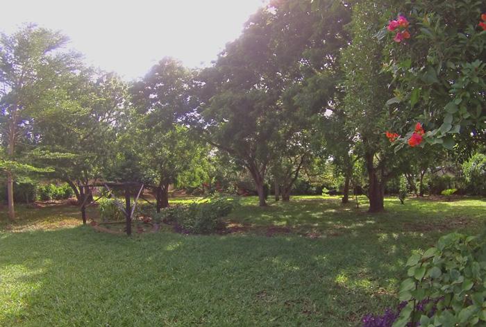 BAK-garden.jpg