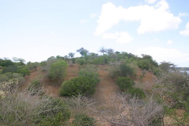 KTD2-hill.jpg
