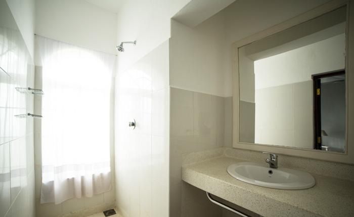 Plant-bathroom.jpg
