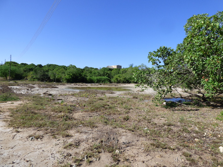 Four acres of 2nd row undeveloped plot next to public beach access. - $550,000 (US Dollars)Ref: BAWS02More Info