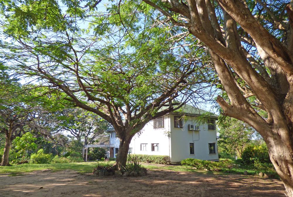 KA02-backhouse.jpg