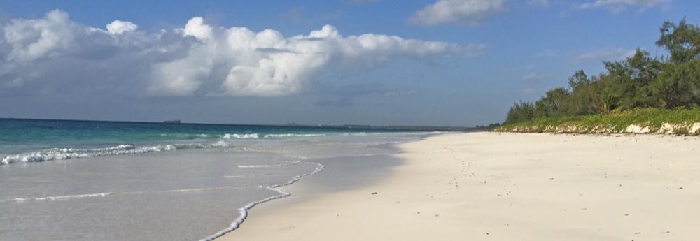 BAGL05-beach-south.jpg