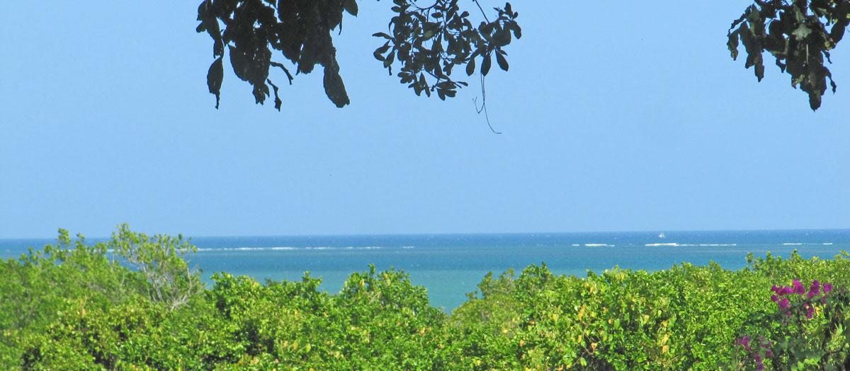 Mtwapa-day-view-banner.jpg