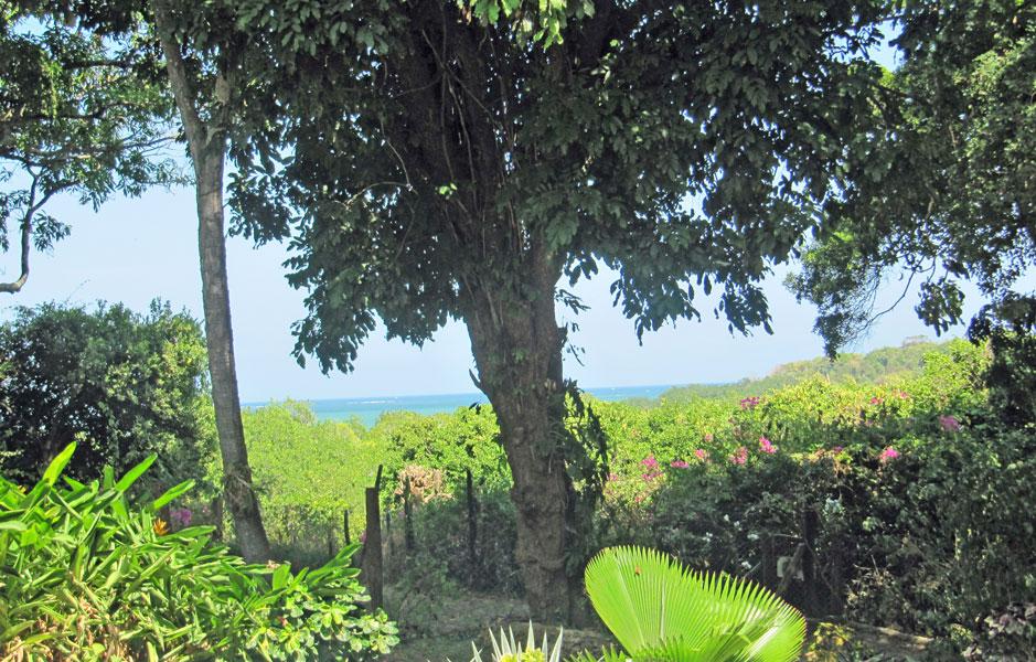 Mtwapa-rondavel-view.jpg