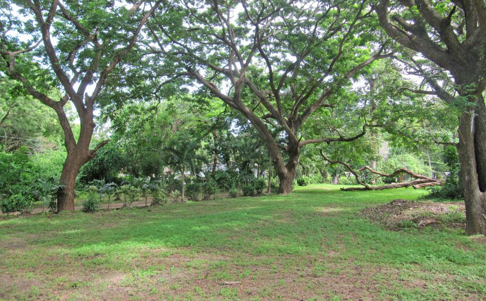 Mtwapa-land.jpg