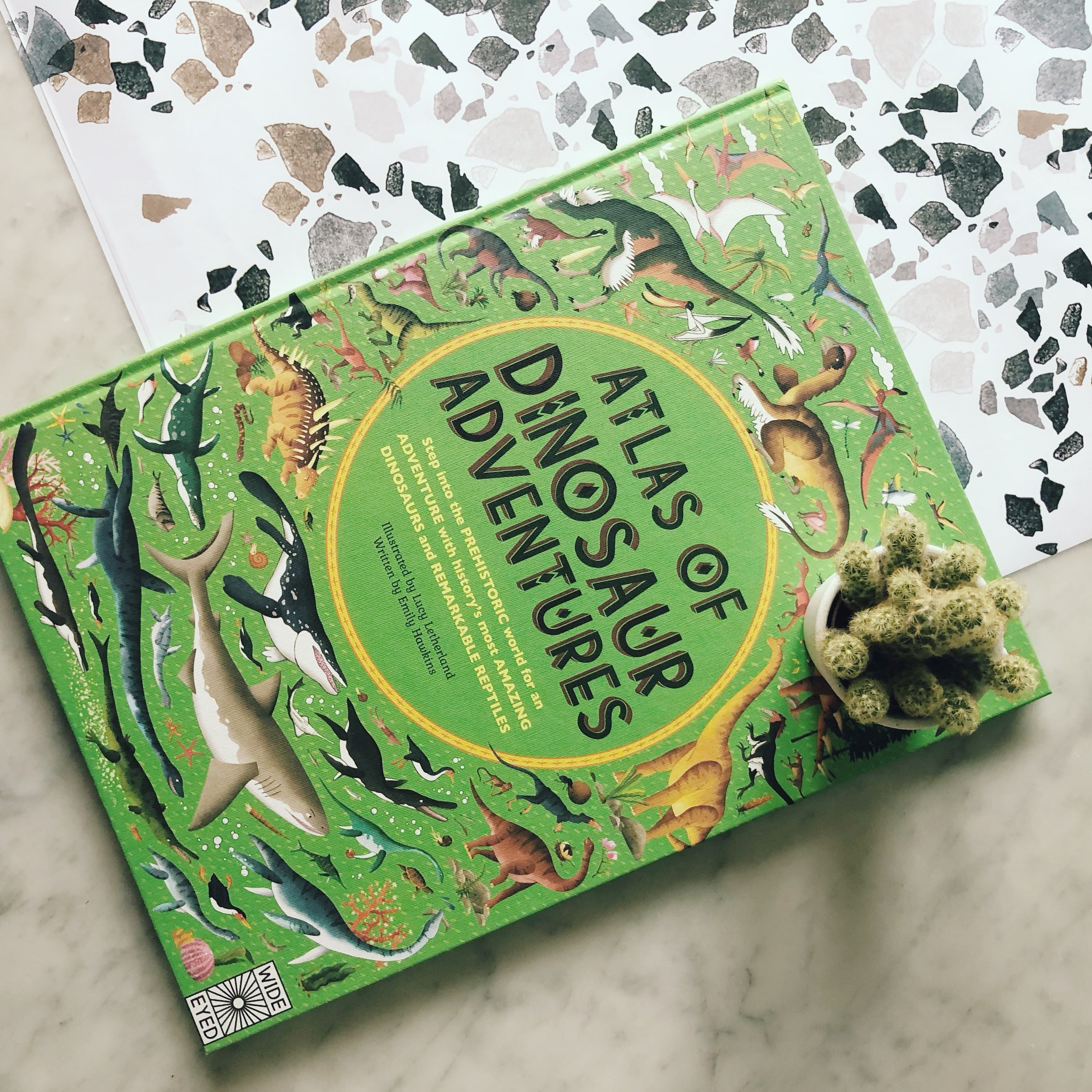 Something Factual.  By far the most visually stimulating and interesting book for dinosaur mad children, this lovely hardback is a good one to keep forever. It's filled with illustrations and facts.  Bought from  Smallprint Books