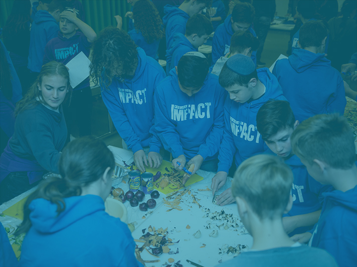 PROJECT IMPACT - Year 9