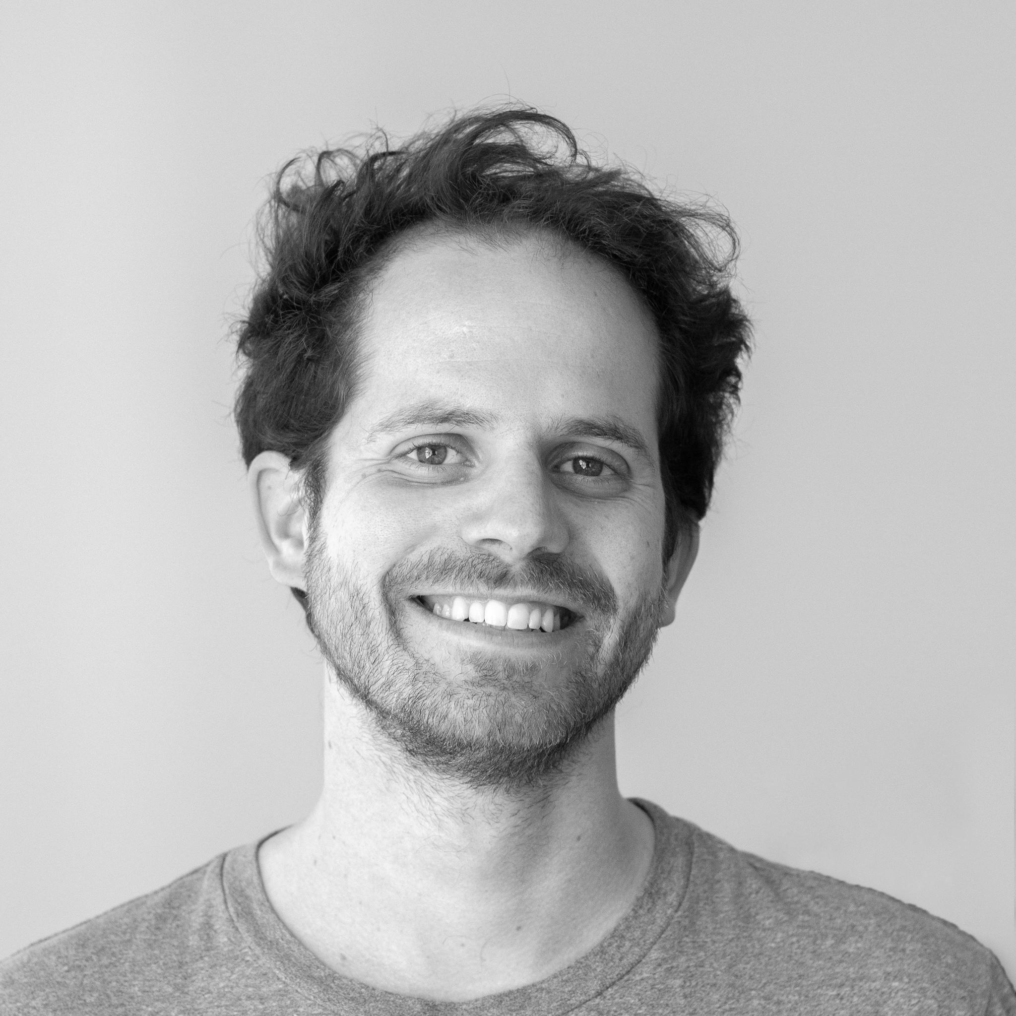 Lead Developer  Gonçalo Alves