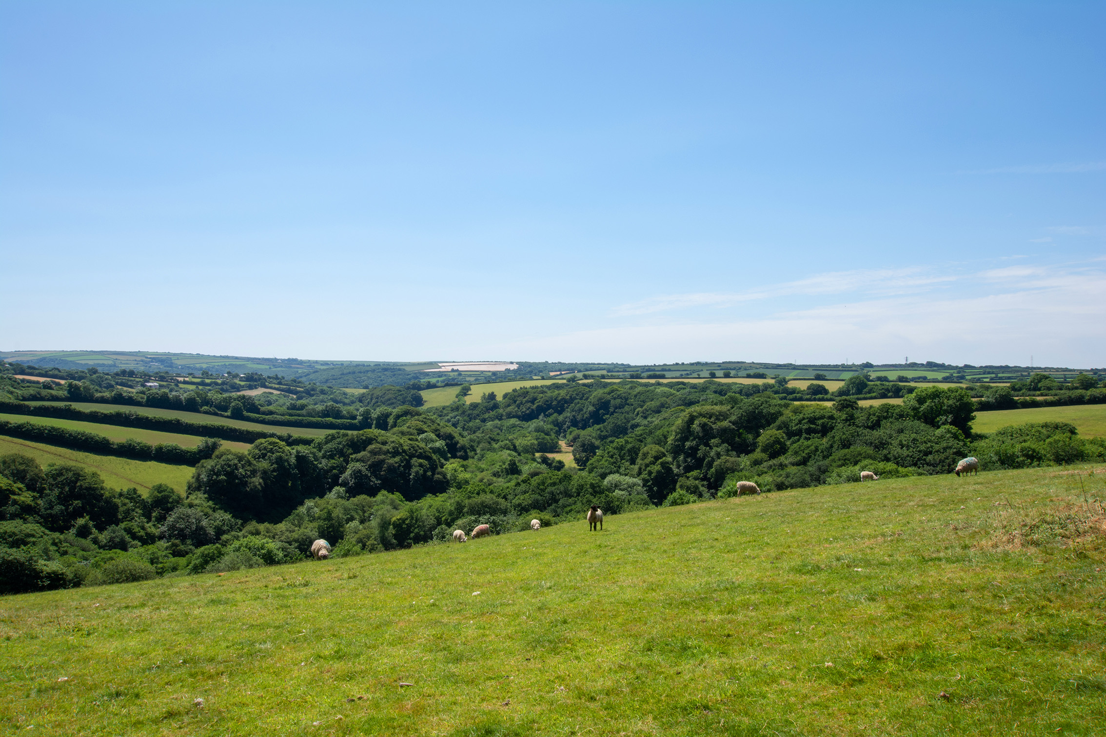 The view from Penrose Burden luxury self catering converted barn holiday cottages in North Cornwall 03.jpg