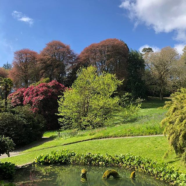 Our very first visit to @trebahgarden today. It was absolutely stunning and we really recommend it for a great day out whist staying at @penroseburden . . . . #gardens #cornwall #selfcateringcottages #holidaycottages #cornishhorizons #holiday #easterholidays