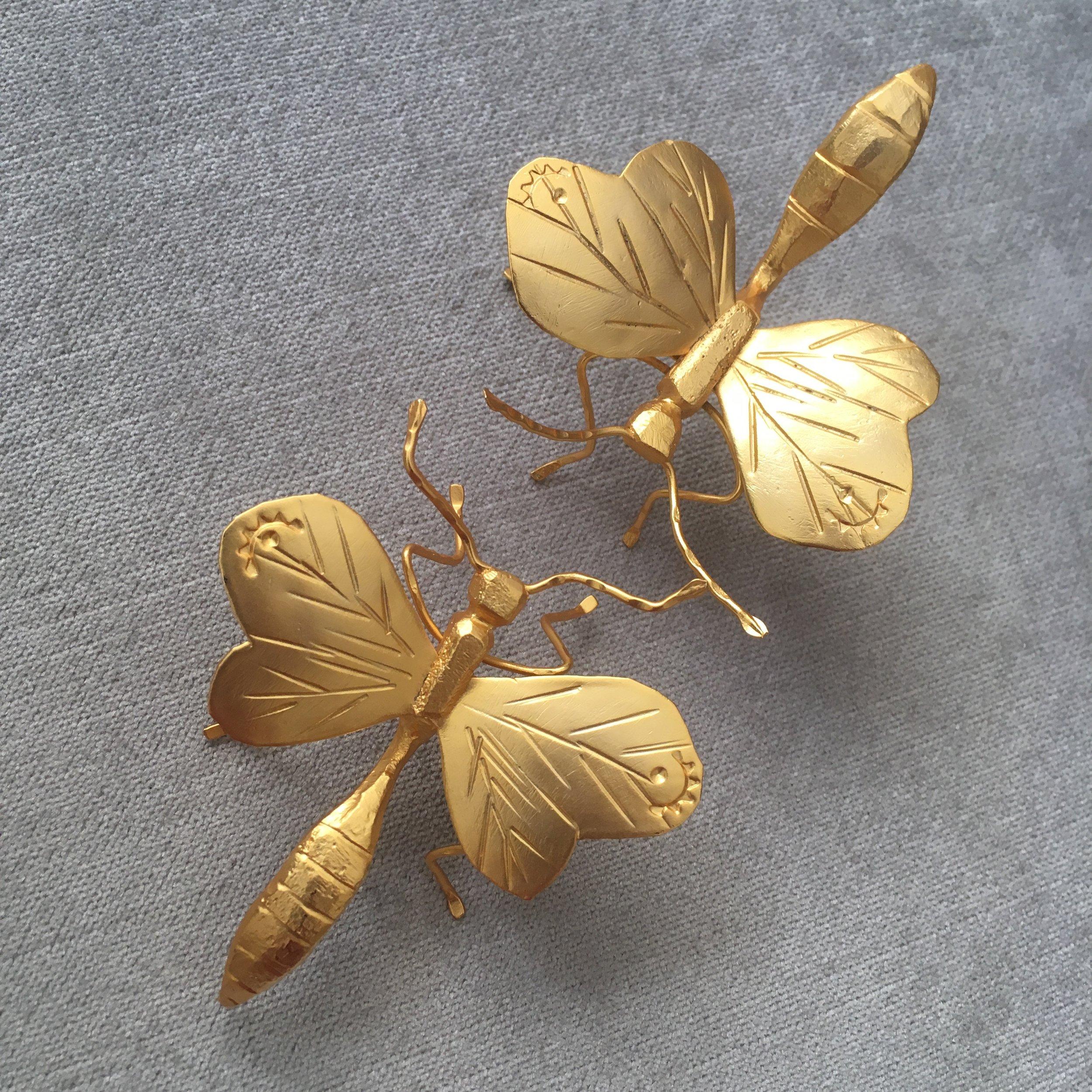 wisteria chrysalis -