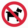 Please do not bring dogs to the farm. Thank you! -