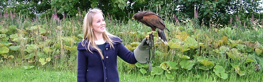 Hawk experience with The Scottish Countryman