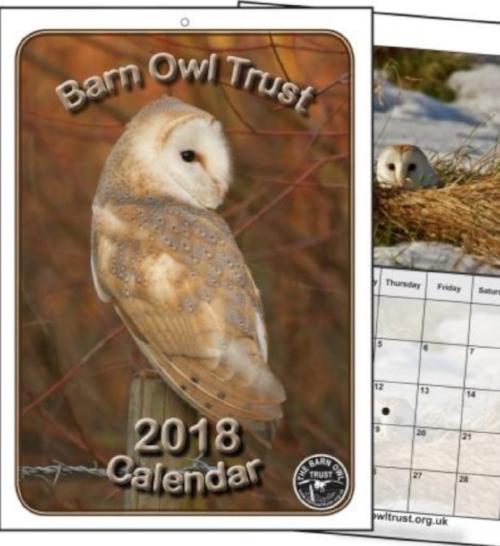 Barn Owl Trust's 2018 Calendar