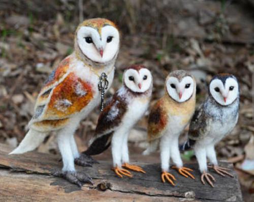 A felt barn owl collection