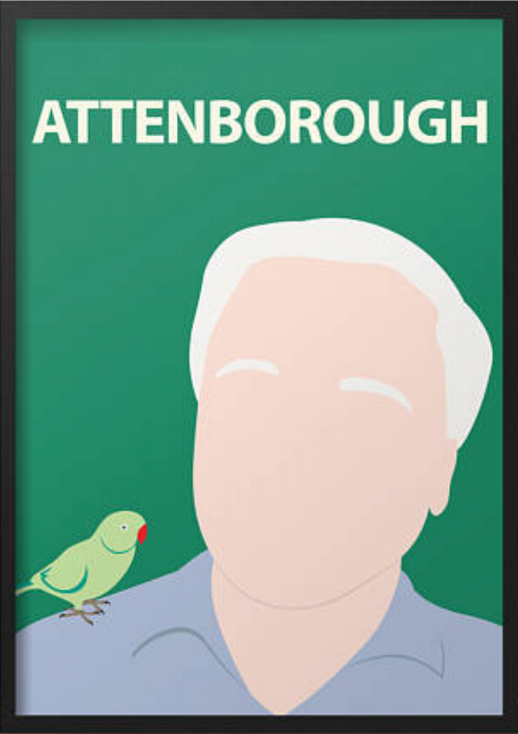 Attenborough print from the TopFloor Store by Matt Dawson on ETSY