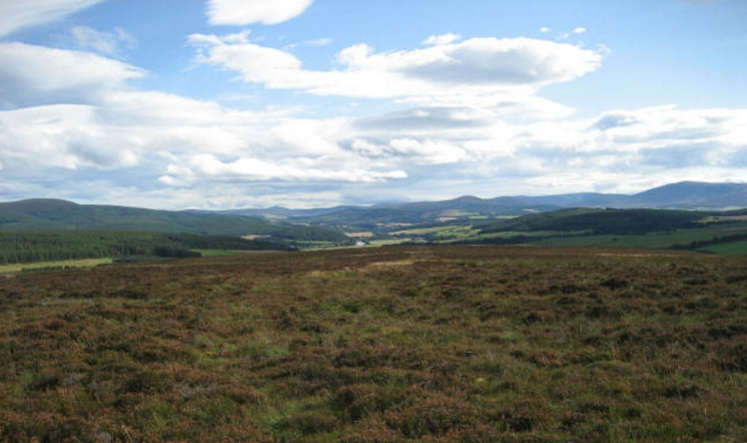 This is the kind of land space you need for game hawking! A stunning grouse moor in Scotland