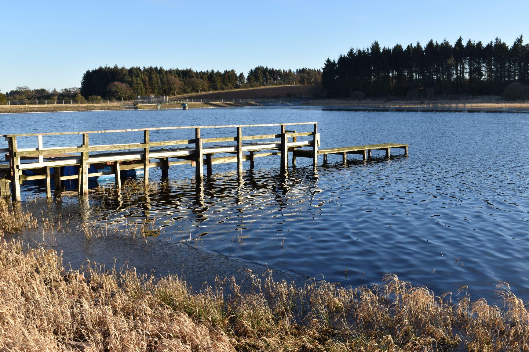 Cameron Reservoir 2.JPG