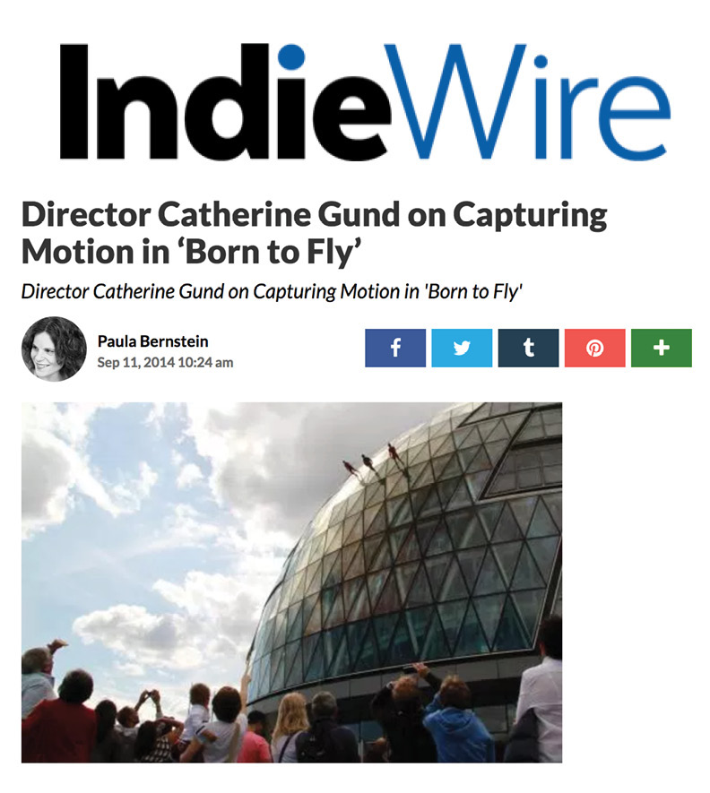 Indie Wire_Born to Fly.jpg