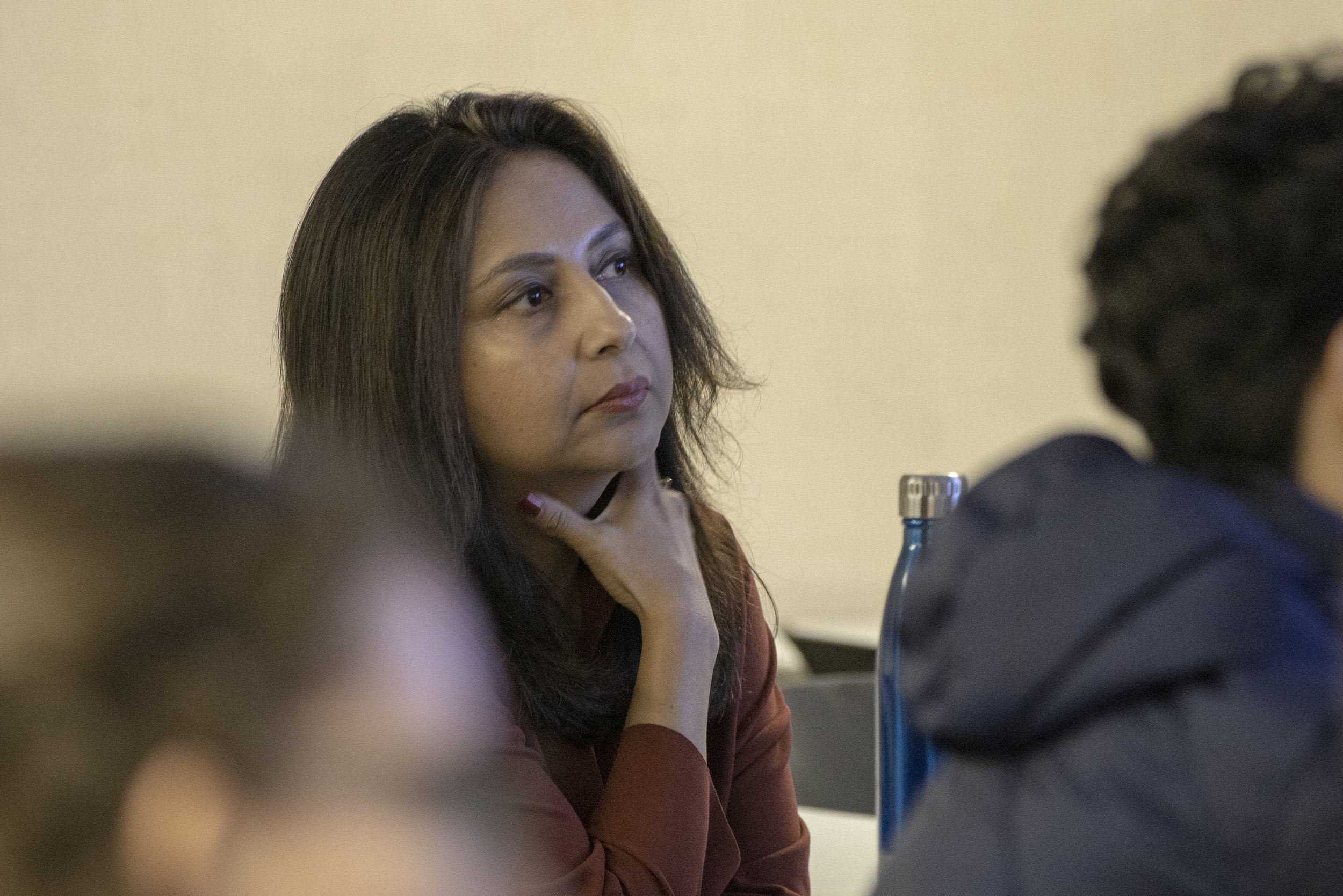 Ananya Roy, PhD