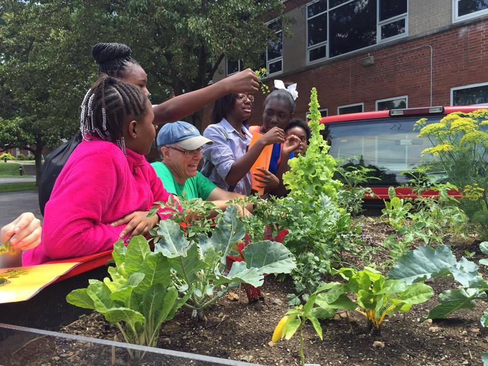 The Food Literacy Project visits Summerbridge