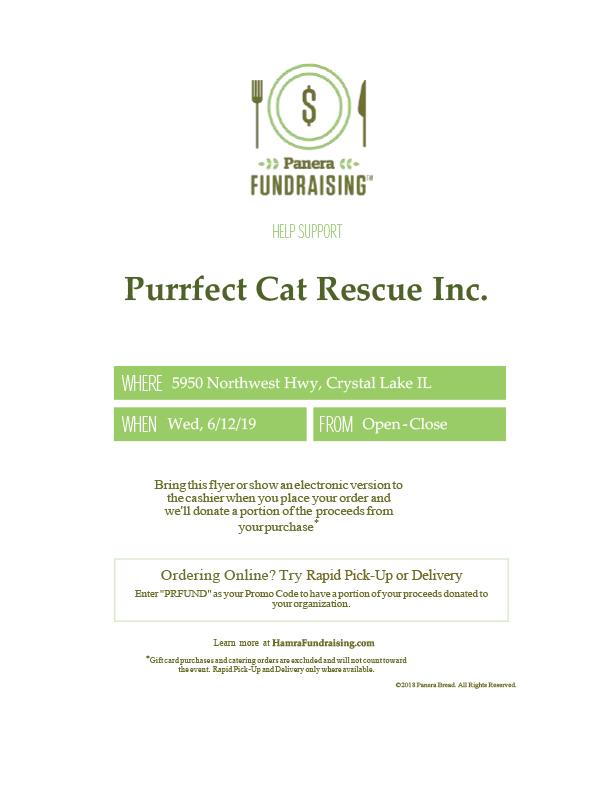 purrfect_cat_rescue_panera_fundraiser.jpg